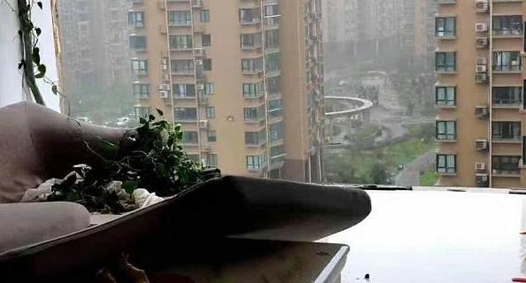 사람이 날아갔다...태풍 하구핏 덮친 中