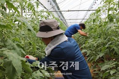 안산도시공사, 노사 공동 농촌 일손돕기 활동 전개