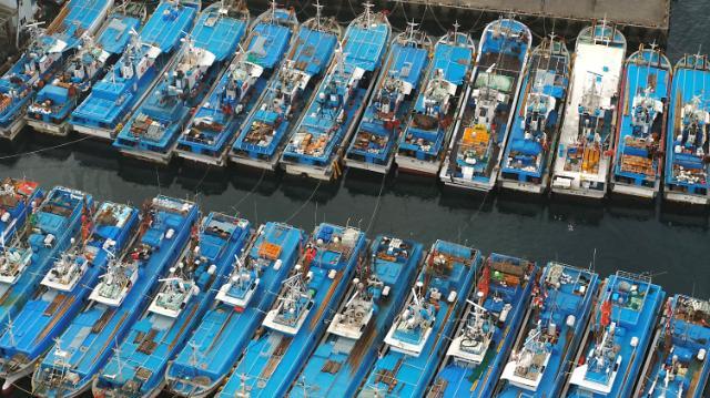 19일부터 어선원 보험료 신용카드로 낸다
