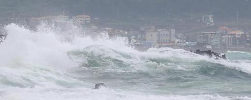 """第8号台风""""巴威""""靠近济州岛"""