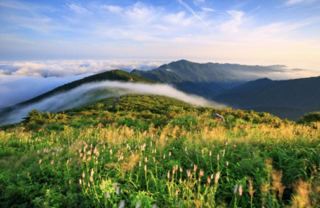 자연유산인 국립공원, 코로나19 시대 속 콘텐츠가 된다