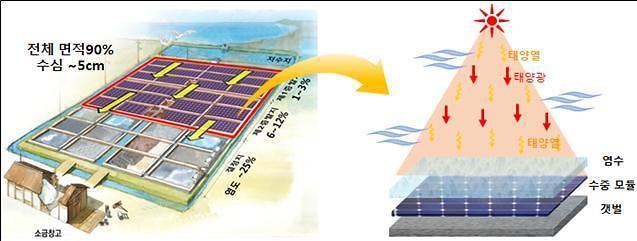 전기와 소금을 동시 생산…한전 염전태양광 구축