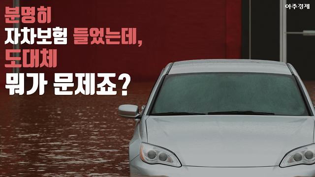 """태풍·침수로 인한 자동차 파손...""""이럴 땐 보험 처리 안 돼요"""" [카드뉴스]"""