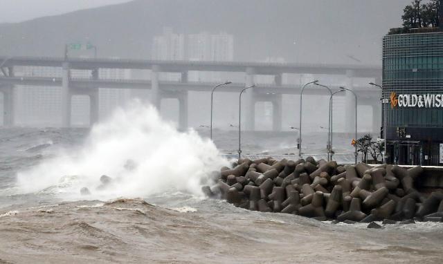 벌써 11호 태풍 노을·돌핀이? 기상 앱 윈디닷컴 보니…