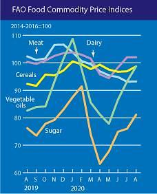 쌀·설탕 가격 상승에 세계식량가격지수 2%↑...코로나19 초기 수준