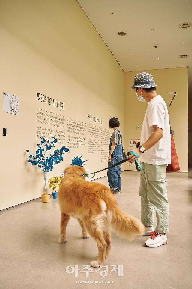 '모두를 위한 미술관, 개를 위한 미술관'이 전하는 '함께 살기'