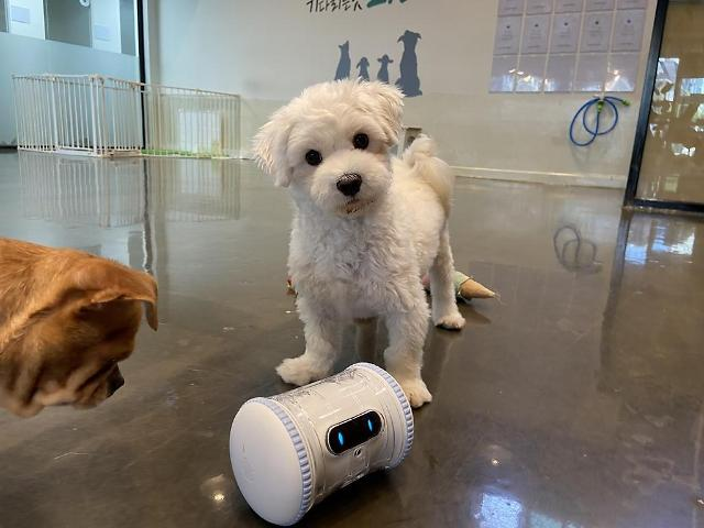 Seoul district office to demonstrate AI-based care robots for abandoned pets