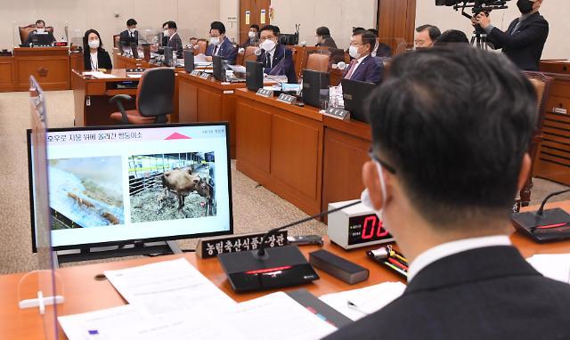 """[2020 국감] """"가정간편식 시장 4년간 106% 커졌는데…한국 수출액 0.3% 뿐"""""""