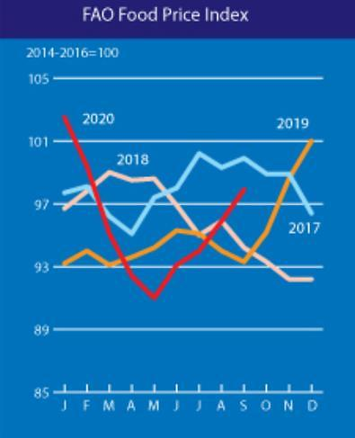 밀·옥수수 곡물값 올라, 9월 세계식량가격지수 전월대비 2% 상승