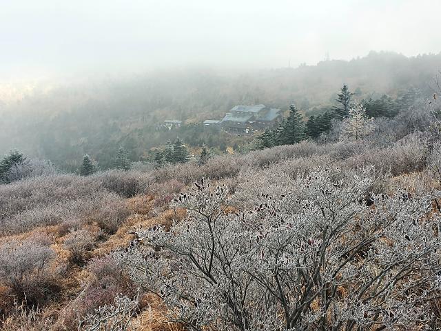 """[내일날씨]""""벌써 겨울인가""""…아침 곳곳 서리·얼음, 낮부터 따뜻"""