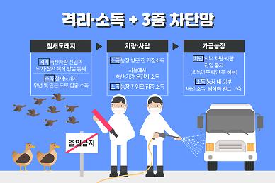 천안 조류독감 발생, 닭·오리 값 오르나...정부 육계 수급 문제 없다