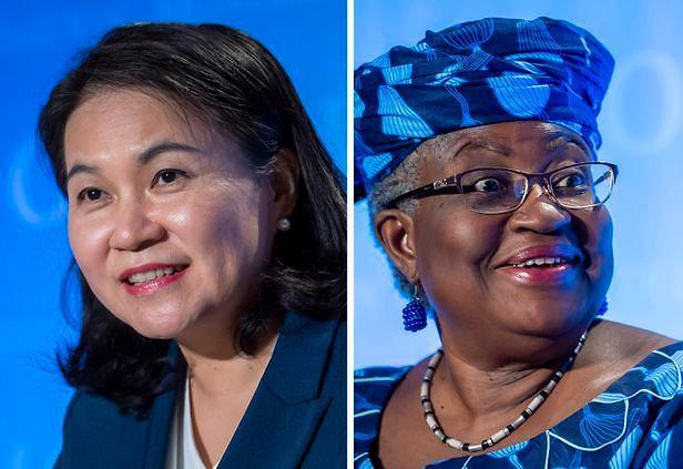 EU, WTO 총장에 나이지리아 후보 지지 합의