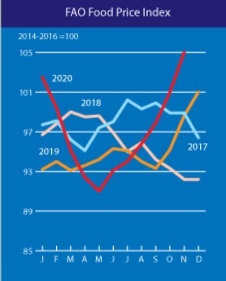 곡물·육류·설탕 가격 다 올랐네...세계식량가격지수 6개월 연속 상승