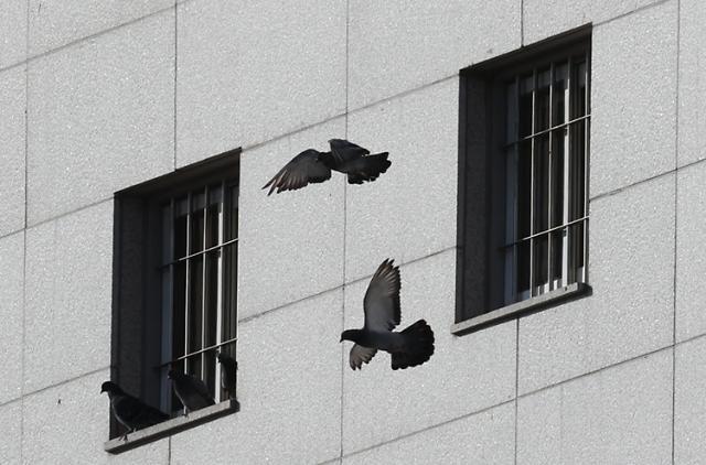 """[코로나19] 정부 """"오늘 '교정시설 방역대책' 발표 아냐…혼선 양해"""""""