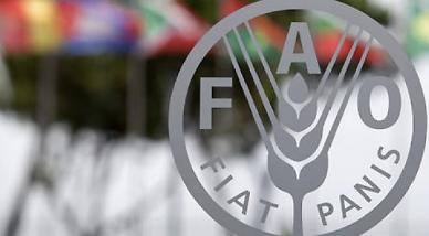 세계식량가격지수 7개월 연속 상승