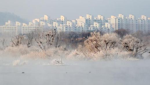 雾凇绽放昭阳江