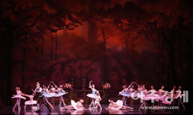 발레, 새해엔 관객 속으로 '아름다운 비상'