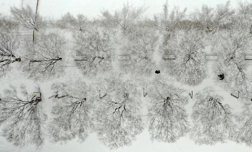 韩国解除大雪警报 维持寒潮预警