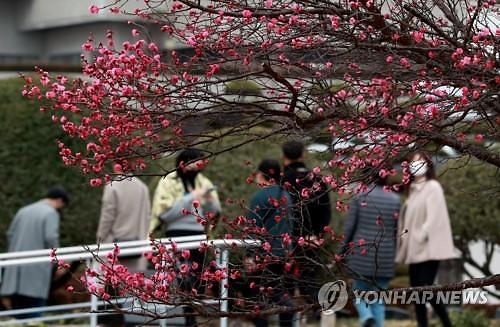 [내일 날씨] 전국 낮기온 영상권 포근···서울 11도, 부산 13도 등