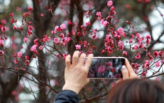[오늘의 날씨 예보] 봄처럼 포근한 날씨...낮 최고 15도