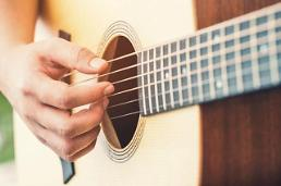 .TV music shows inspire homebodies to purchase guitars online.