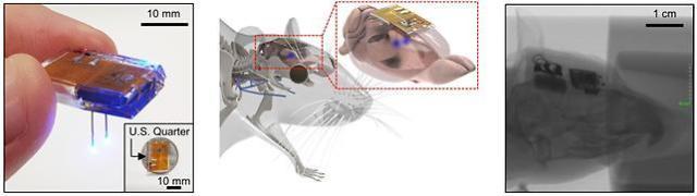 카이스트, 무선충전 가능한 뇌이식 장치 개발