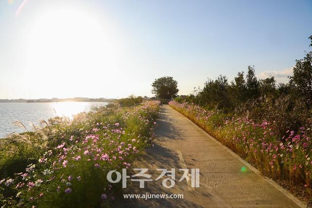 서천군, 생태녹색관광 문화체육관광부 공모사업 선정