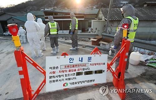 禽流感致韩鸡蛋鸡肉价格暴涨 农户质疑政府防疫过度