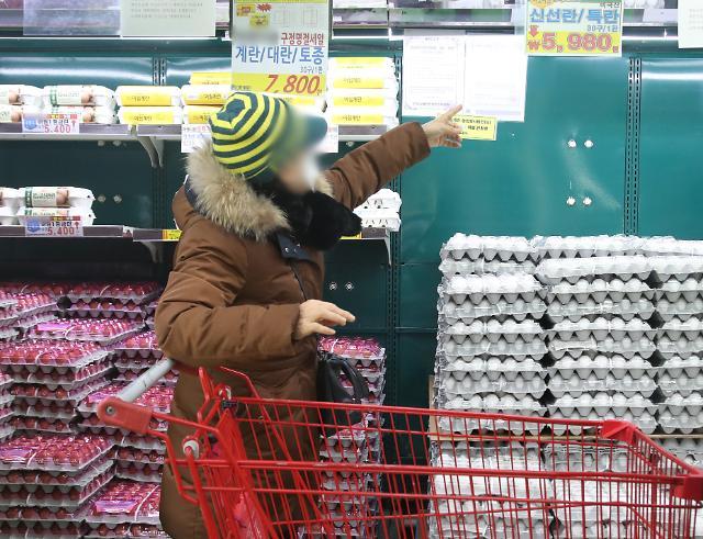 [포토] 마트에서 판매되는 미국산 계란
