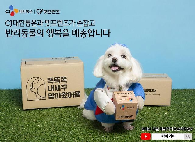 """一切以""""主子""""需求为优先 CJ大韩通运推宠物用品翌日送达服务"""