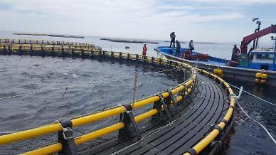 올 상반기 대기업 양식업 본격화...태평양 참다랑어·대서양 연어 확정