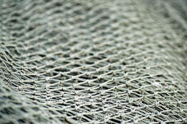 State project launched to popularize biodegradable fishnets and protect environment