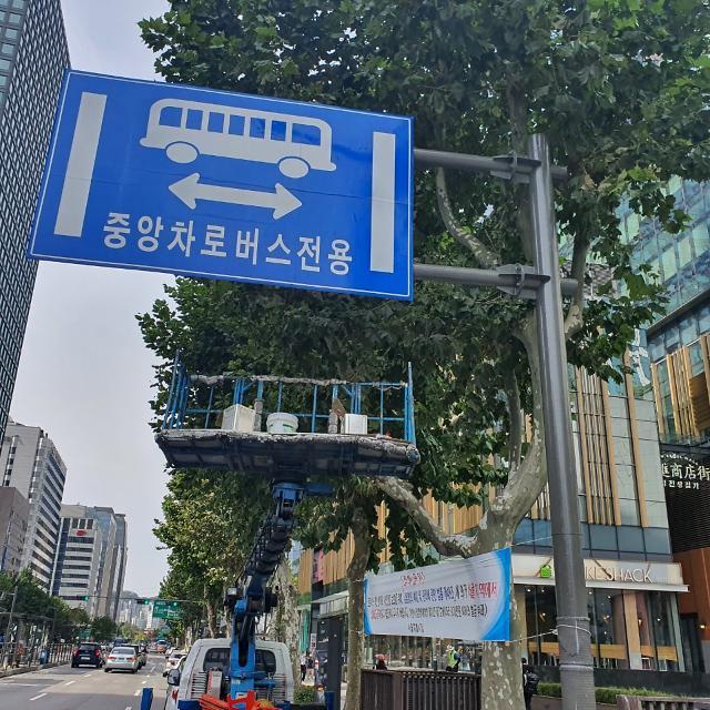 비우고 정리한 종로…도시의 긍정적 변화 이끈다