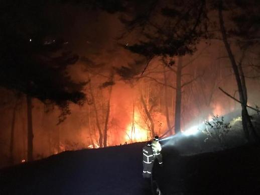 韩国东南地区多地发生森林火灾