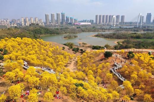 【亚洲云图】中国南方各地春花绽放 踏春正当时