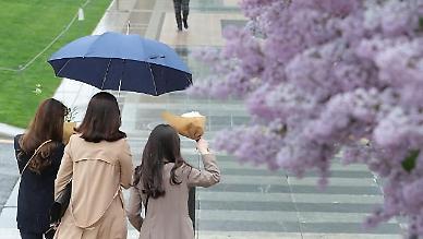 [내일 날씨] 3·1절, 전국에 촉촉한 '봄비' 내린다
