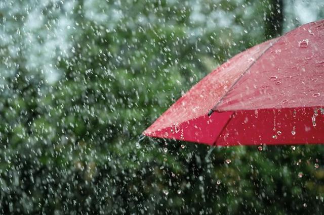 전국에 내일 오전까지 비...최대 100mm 폭우 예상