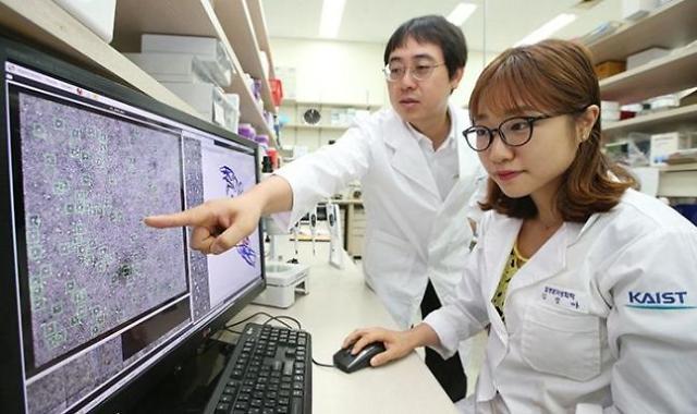 2021年QS世界大学排名发布 韩国高校连续3年无缘TOP10