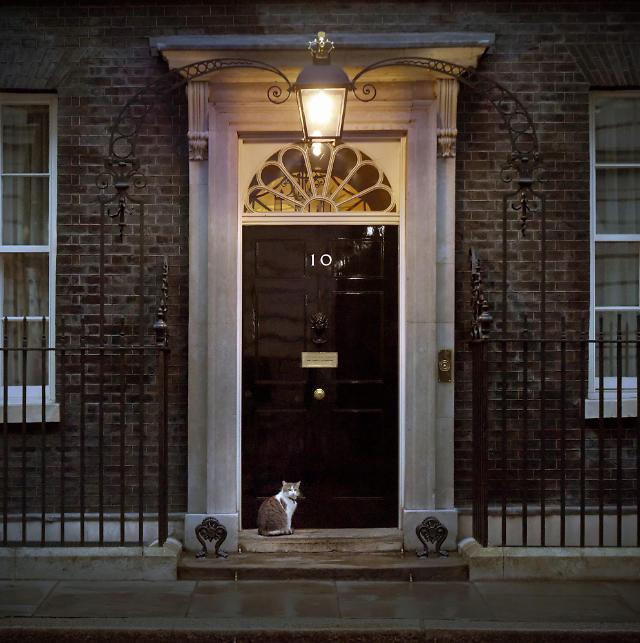 [문은주의 영국은 왜] 총리 관저에 고양이가 사는 이유