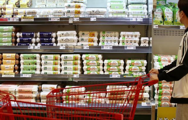 3 ~ 5 월 계란 생산량 전년 대비 17 % ↓… 가격 68 % 상승