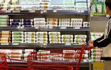 3∼5월 달걀 생산량 전년比 17%↓…가격 68% 상승 조짐