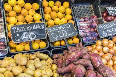 브라질, 인플레 공포에 기준금리 75bp 인상