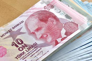 터키 리라화 달러 대비 추락…금리인하에 대한 우려 ↑