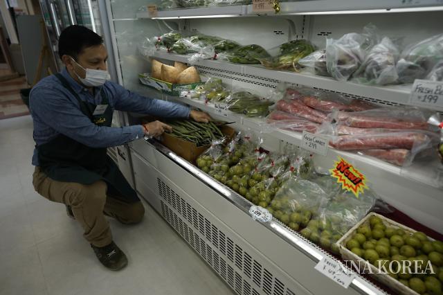 【프로의 시선】 식습관은 식재료에 의해 변한다. 인도 식문화의 원점을 돌아보다.