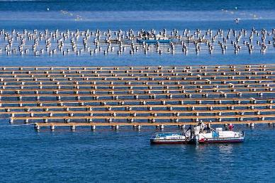 S. Korea to regulate styrofoam buoys at oyster and seaweed farms
