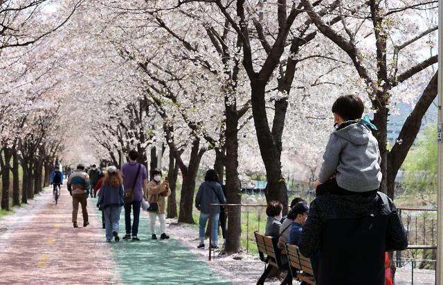 [내일날씨] 전국 완연한 봄날씨…큰 일교차 주의