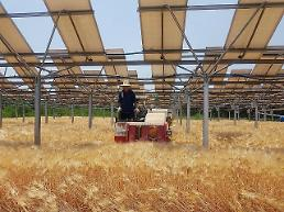 Hanwha Q Cells to produce photovoltaic modules for simultaneous solar power and farming