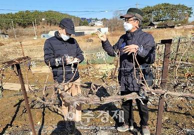 경기도, '로컬푸드 활성화' 지원···농가 440곳서 맞춤형 컨설팅