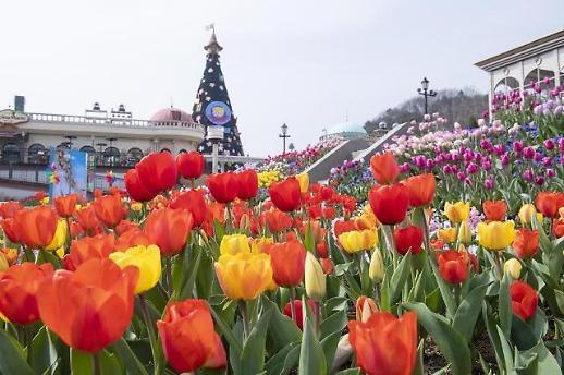 Chào mùa tulip tháng 4
