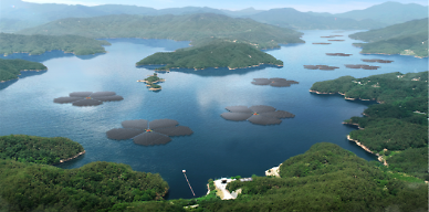 [아주 쉬운 뉴스 Q&A] 물 위에 떠 있는 태양광, 왜 필요한가요?
